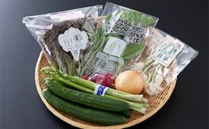 【野菜ソムリエセレクト】旬の野菜果物セット1~2人用