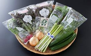 【野菜ソムリエセレクト】旬の野菜果物セット5~6人用
